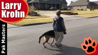 Training a HUMAN REACTIVE German Shepherd (Dog Aggression)