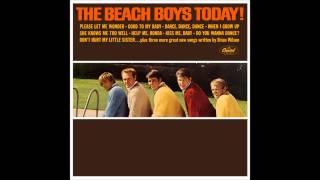 Joel Koster || Please Let Me Wonder || Beach Boys Cover