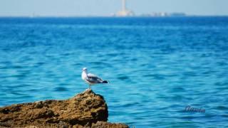 Vacanze nel Salento in Puglia
