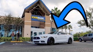 She brought her SUPERCHARGED Mustang to CarMax and THIS is what they gave her! CarMax Appraisal