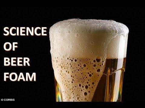 What is Beer Foam? The SCIENCE of Beer Head
