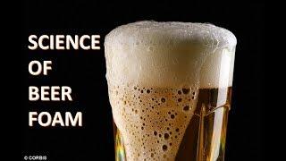 What is Beer Foam? Tнe SCIENCE of Beer Head