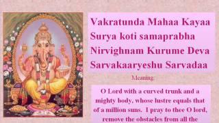 DAVID ANANDA Vakratunda Mahakaya mantra