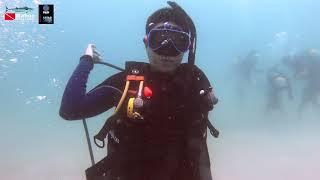 PADI Open Water Diver Certify