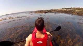 Harbour Boys - Joel Plaskett - Scrappy Happiness Video Contest