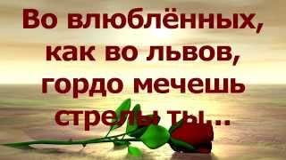 """NIZAMI """"Во влюблённых, как во львов, гордо мечешь стрелы ты"""" Марина Мудрук"""