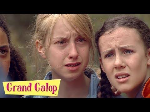Grand Galop - Épisodes 5  à 8 | Compilation | Grand Galop Saison 2