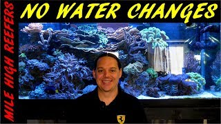 Why I don't do water changes on my reef tank