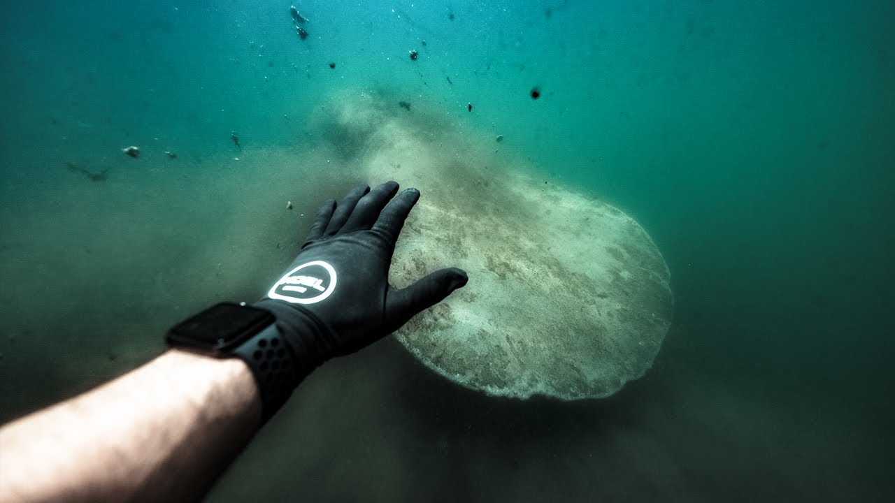 swimming-with-largest-freshwater-mammal-in-the-world-wild