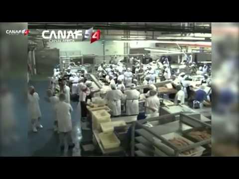 un documentaire sur le Gabon
