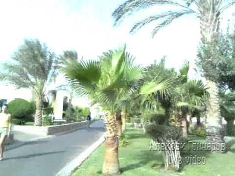 Египет. Хургада. Лилиленд - отель с маршруткой ッ Едем на море и обед