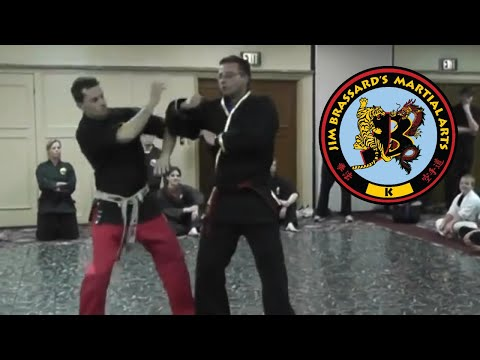 Shaolin Kempo Karate Jiu-Jitsu Kung Fu - GM Jim Brassard