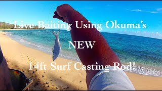 Live Baiting Okuma's NEW 14ft Surf Rod!
