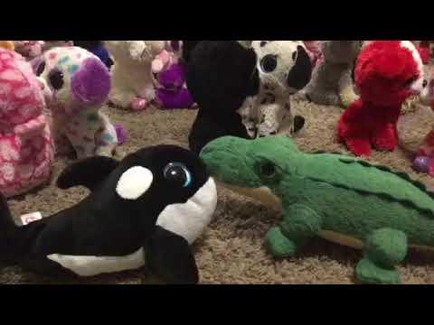 ef44c3a9785 Spikes 1st birthday beanie boo video - YouTube