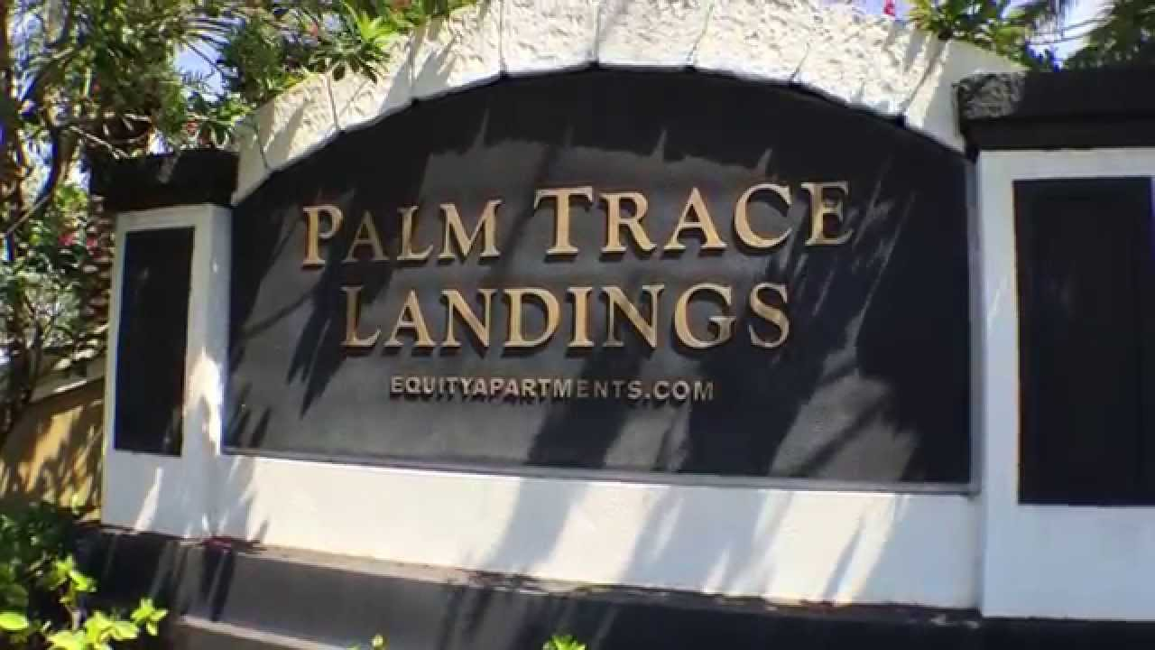 Palm Trace Landings Apartments Davie Fl 1 Bedroom 1b Floorplan Youtube