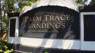 Palm Trace Landings Apartments Davie Fl