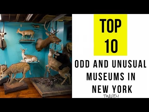 TOP 10 Odd and Unusual Museums in New York