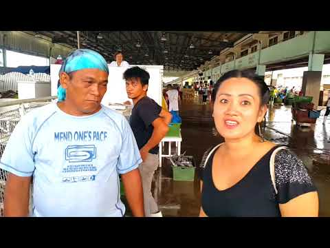 Cheap Fish Business In Philippines 14-03-2018