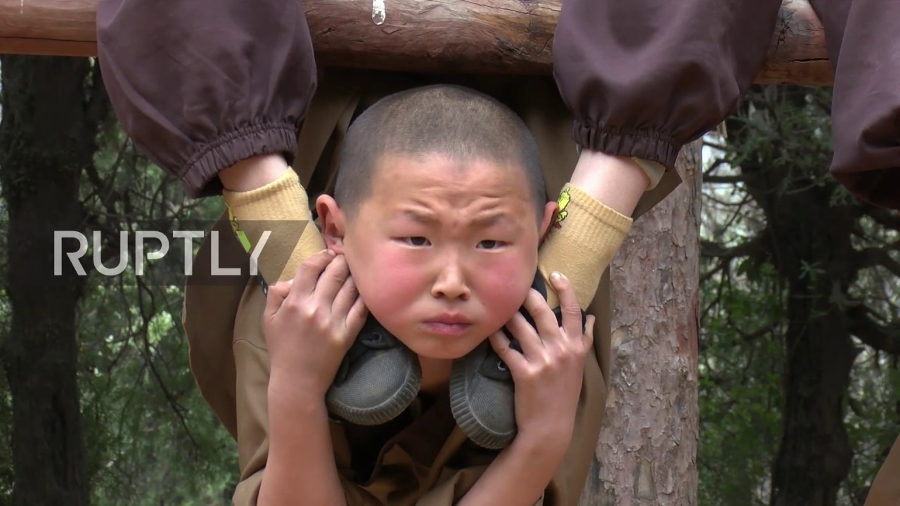 Download Little monks swinging in a tree! 6y/o trainees exhibit remarkable feats of strength