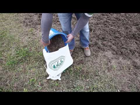 how-to-plant-a-wildflower-meadow-part-ii