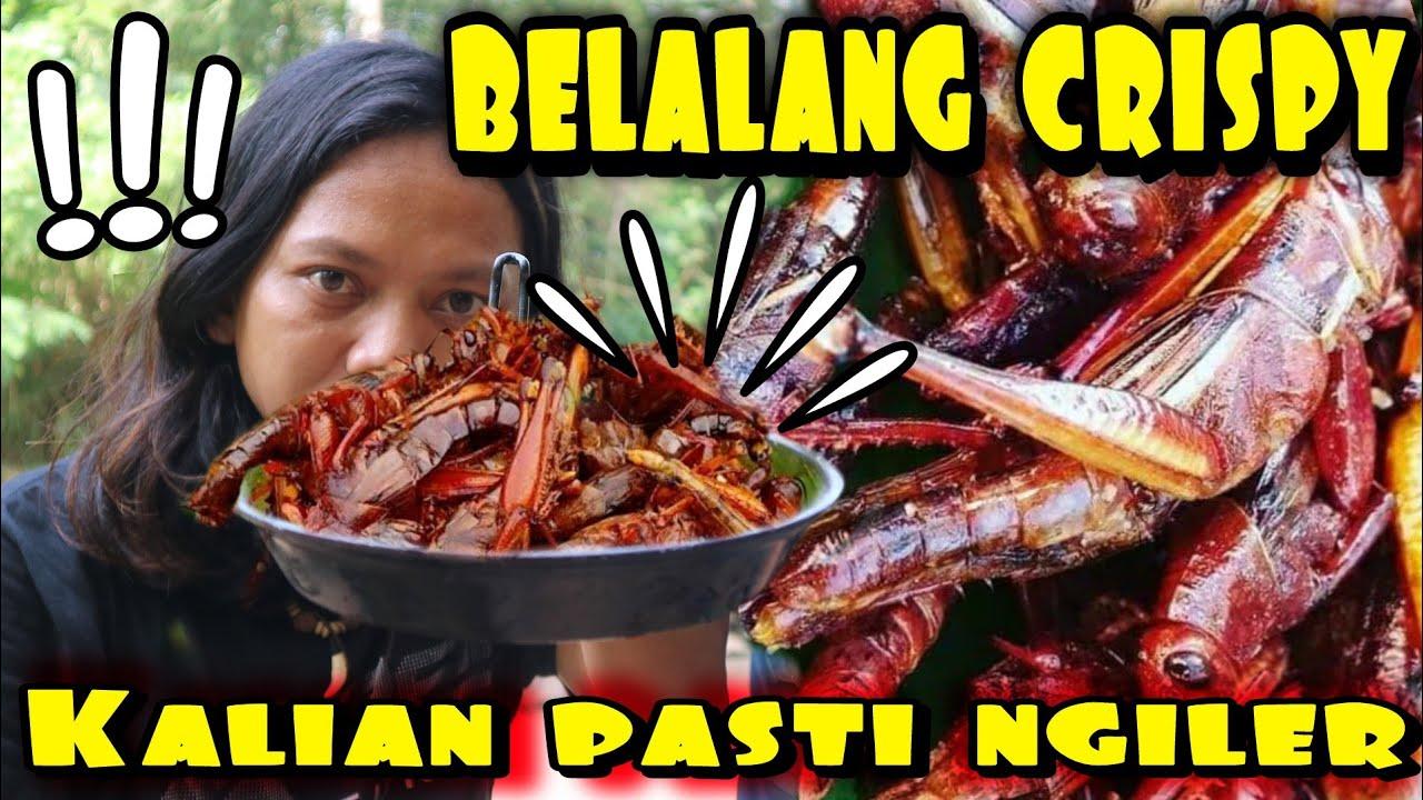 BELALANG CAPUNG GORENG CRISPY HASIL TANGKAPAN RASANYA A....G BANGET