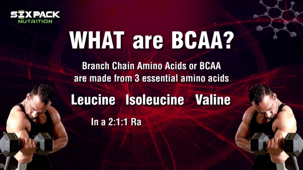 six pack nutrition bcaa