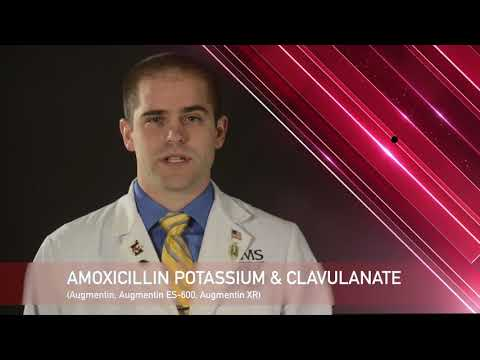 Augmentin Medication Information (dosing, Side Effects, Patient Counseling)
