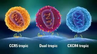 Resistance HIV & AIDS - CCR5 & CXCR4, Eng. [CCR5delta32 - CCR5 tropic, Dual tropic, CXCR4 tropic]