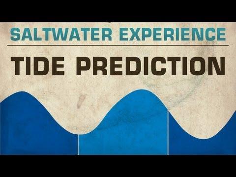 FLATS FISHING TIPS: Predicting The Tides