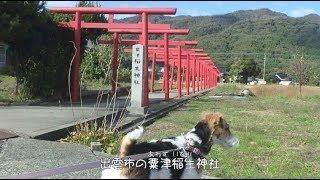 鳥取、島根に旅行に行って来ました。 道路が整備されおり楽に行ける様に...