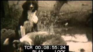 Farming life in the 1930's -- Film 16571