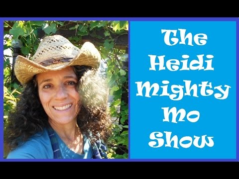 The Heidi Mighty Mo Show!  Garden and Chicken Updates and Random Q&A