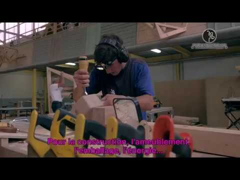 Vidéo Olympiades des métiers 2017 Charpentier