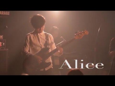 緑黄色社会 『Alice』 LIVE