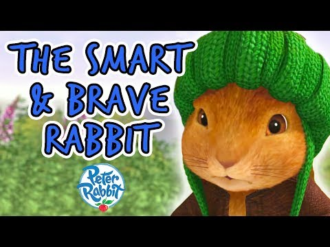 Peter Rabbit - The Smart and Brave Rabbit | Summer Compilations