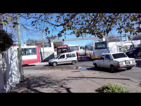parador de colectivos ilegal y perjudicial para el Barrio Hipódromo
