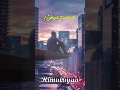 Hoyanawa Matama Kiya I හොයනවා මටම කියා Cover Song - Himalayan