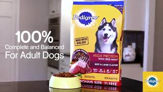 Pedigree High Protein Adult Dry Dog Food Reviews