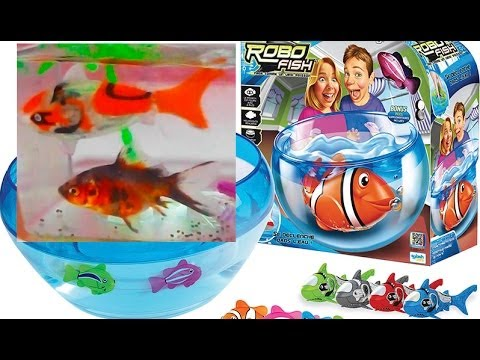 ROBOFISH. COMPARE THE ROBOT WITH A REAL FISH. OPENING OUR NEW TOY STAR 2013