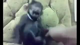 Download Video Jàpàñ breàst. Fread baby sceàn MP3 3GP MP4