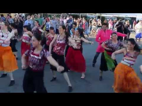 Bollywood Funk NYC at Governors Ball Music Festival 2014