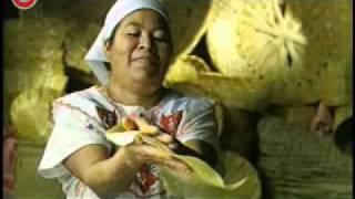 PROMO Estado de Oaxaca (cortv)