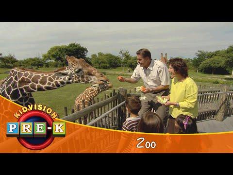 take-a-field-trip-to-the-zoo- -kidvision-pre-k