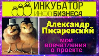 """Мои впечатления о проекте Александра Писаревского """"Инкубатор Инфобизнеса"""" 26 апреля 2019 г."""