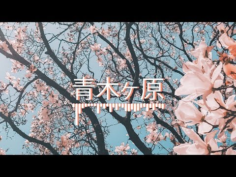 "Emotional Beat 2019 ""青木ヶ原"" Hopeful Sad Type Beat (Prod. Ihaksi)"