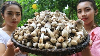 Yummy cooking mushroom with beef recipe - Cooking skill