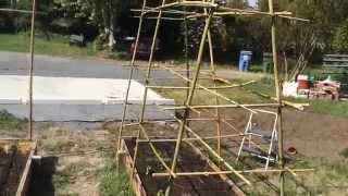 Bamboo Pea And Tomato Trellis