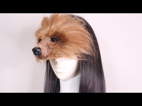 Pet made from Hair