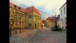 видео Производители клинкера для фасадов Германии