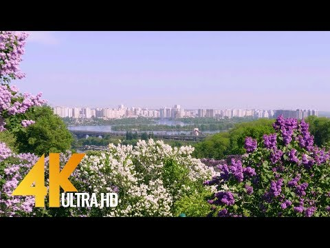 Kiev Botanical Garden, Spring - 4K (Ultra HD) City Life